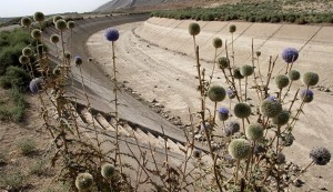 A general view shows a dried-up water ca